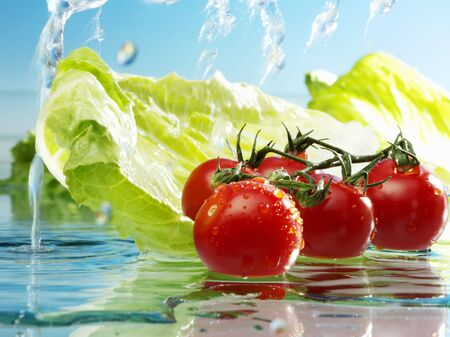 lactuca: Tomatoes and romaine lettuce with water
