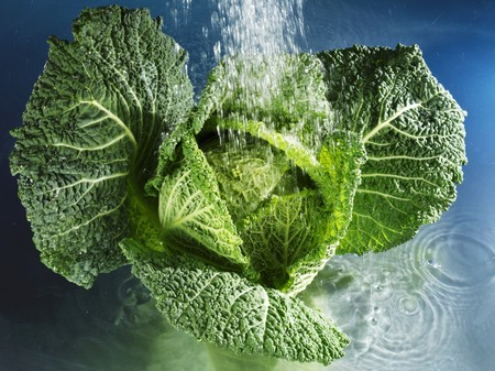 savoy cabbage: Savoy cabbage with water LANG_EVOIMAGES