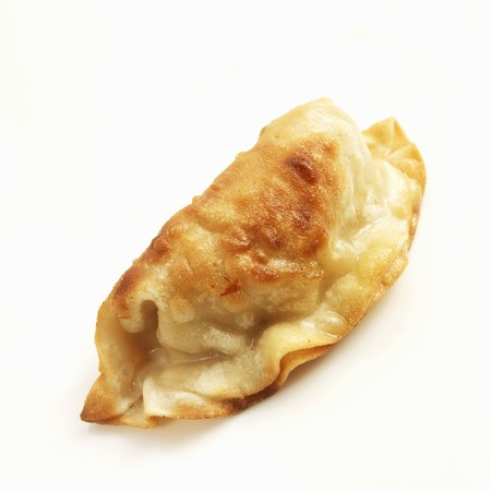 potstickers: One Potsticker on a White Background