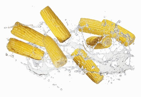 squirted: Corn on the cob with a water splash