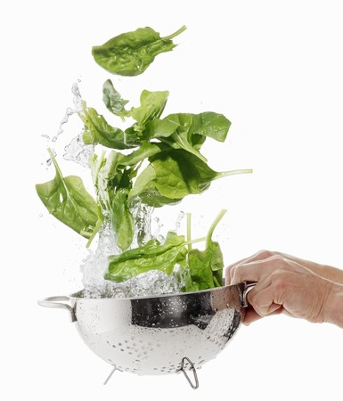 squirted: Washing spinach in a colander