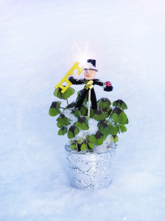 sweeps: Lucky clover (Oxalis) in flowerpot with chimney sweep in snow LANG_EVOIMAGES