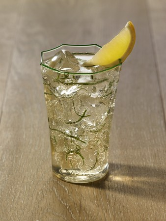 lemon wedge: Mojito in a Green Rimmed Glass with a Lemon Wedge Garnish LANG_EVOIMAGES