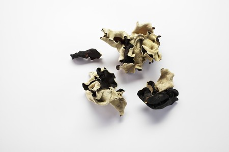 cloud ear fungus: Dried jelly ear fungus