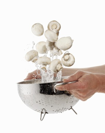 squirted: Mushrooms being washed in a sieve