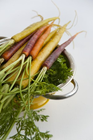 scalded sausage: Various types of carrots: yellow carrots (Pfälzer, Lobbericher) and anthonina