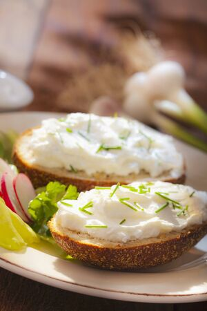food: Rye breads with low-fat quark and chives LANG_EVOIMAGES