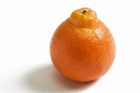 navel orange: One Whole Navel Orange on a White Background LANG_EVOIMAGES