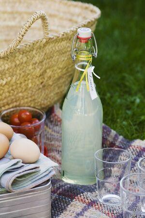 soda pops: Picnic with home-made lemonade LANG_EVOIMAGES