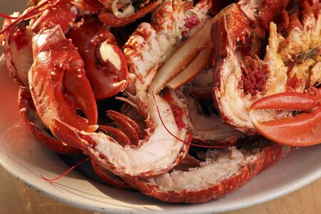 jointed: Cooked lobster, jointed (close-up)