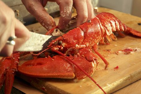 breaking up: Breaking up a cooked lobster