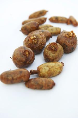 intestines: Mombar (vaca rellena los intestinos con arroz, Egipto)