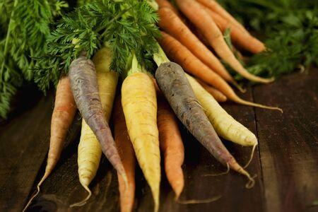 vintage: Carrots of various colours LANG_EVOIMAGES
