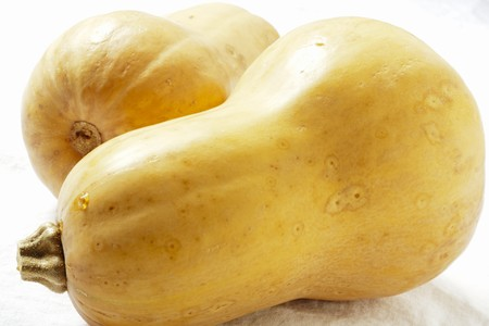 in twos: Two Butternut Squash LANG_EVOIMAGES