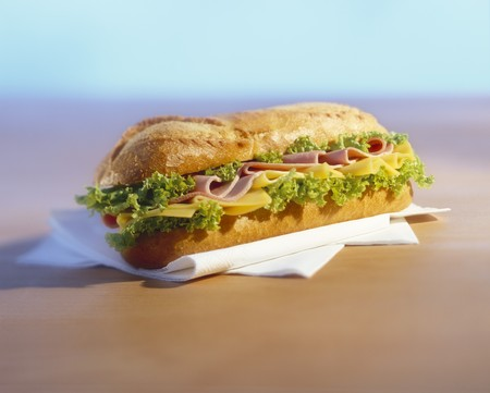 hoagie: A ham, cheese and lettuce baguette LANG_EVOIMAGES