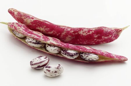 space for type: Borlotti beans in the shell