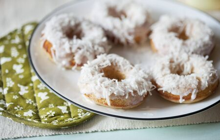 mini oven: Coconut Doughnuts on a Plate