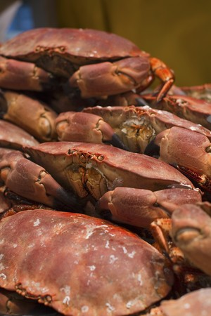 marine crustaceans: Cooked crabs on a market stand LANG_EVOIMAGES