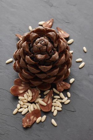 pine kernels: A pine cone and pine nuts