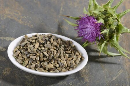 nature cure: Milk thistle (a flower and seeds) LANG_EVOIMAGES