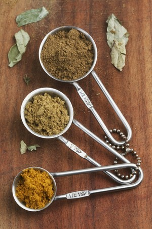 measuring spoons: Various types of curry powder in measuring spoons LANG_EVOIMAGES
