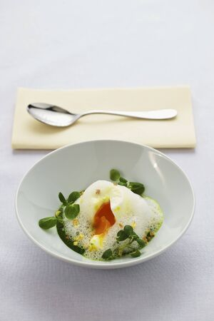 watercress: A poached egg on herb cream with watercress