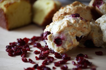 vaccinium macrocarpon: Cranberry Biscuits with Dried Cranberries