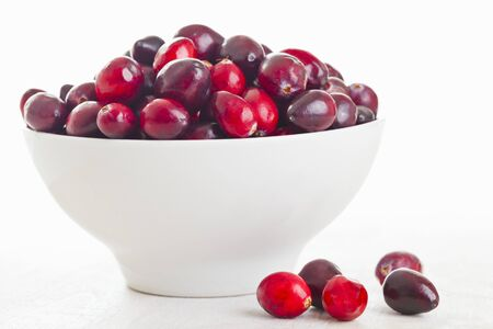 vaccinium macrocarpon: Cranberries in a white bowl LANG_EVOIMAGES