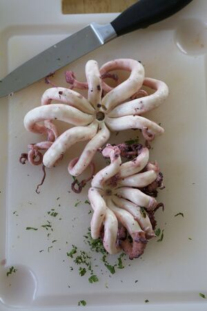 calamares: Fresh octopus on a chopping board with a knife LANG_EVOIMAGES