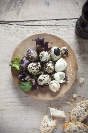 several breads: Quails eggs LANG_EVOIMAGES