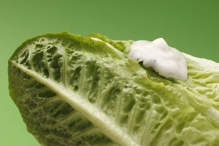 lactuca: Romaine lettuce and yogurt dressing LANG_EVOIMAGES