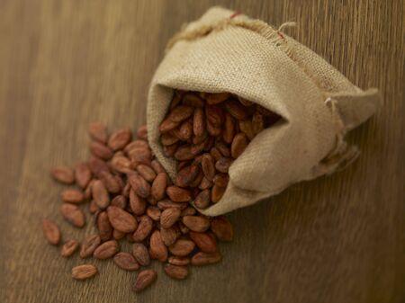 cacao beans: Granos de cacao en un saco de yute