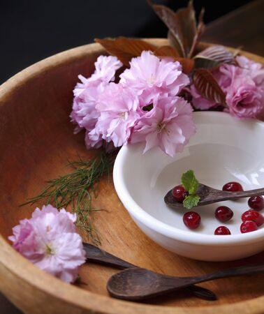 vaccinium macrocarpon: Cherry Blossoms in a Wooden Bowl with Cranberries and Wooden Spoons