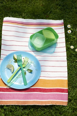 tupperware: A cleared plate and picnic crockery on a striped cloth