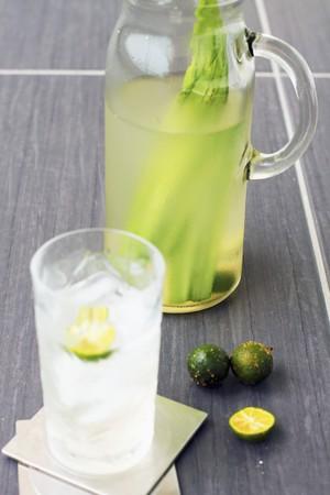 tectorius: Lime and pandan drink