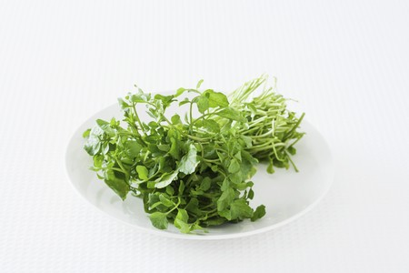 water cress: Fresh watercress on a plate against a white background LANG_EVOIMAGES