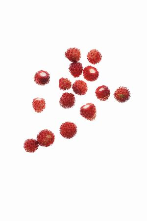 wildberry: Wild strawberries on a white surface LANG_EVOIMAGES