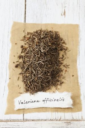soporific: Garden valerian (Valeriana officinalis), dried