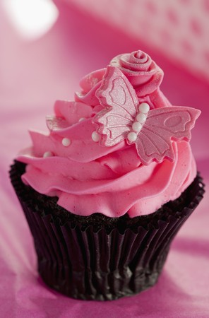 childs birthday party: Chocolate cupcake with strawberry icing and a pink butterfly LANG_EVOIMAGES