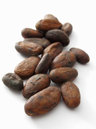 cacao beans: Granos de cacao