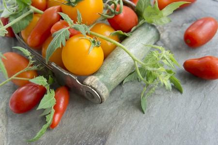 produits alimentaires: Diverses tomates avec des feuilles LANG_EVOIMAGES