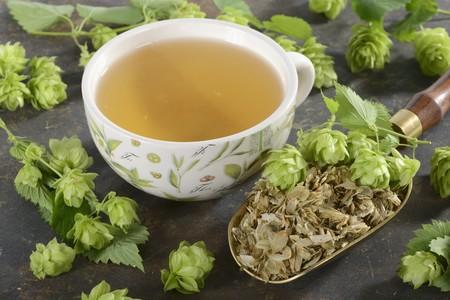 hop hops: Hops tea and hop cones