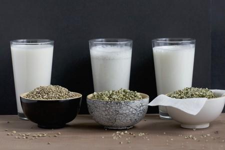 ersatz: Home-made hemp milk with whole seeds and shelled seeds; milk is still being filtered