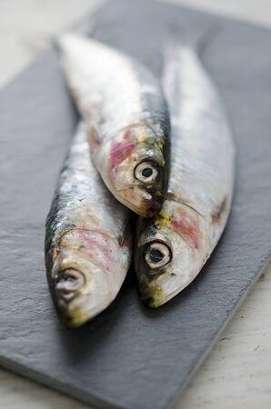 sardinas: Tres sardinas frescas