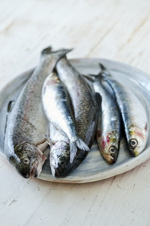 salmo trutta: Fresh trout and sardines LANG_EVOIMAGES