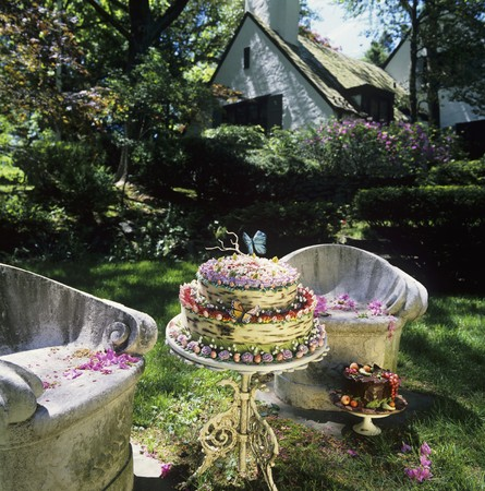 settle back: A Woodland Cake with Butterfly Decorations on a Small Outdoor Table