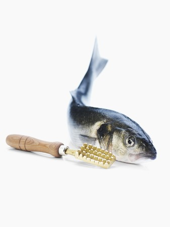 scaler: A bass with a fish scaler