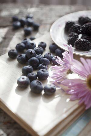 brambleberries: A summer still life of blueberries, blackberries and flowers LANG_EVOIMAGES
