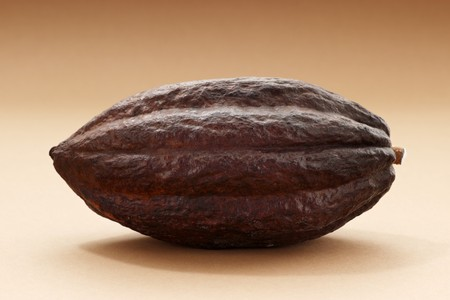 brawn: A cacao fruit LANG_EVOIMAGES