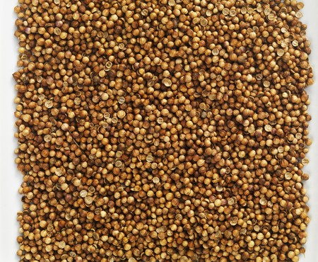 coriander seeds: Coriander seeds seen from above
